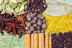 Background from various spices Royalty Free Stock Photography