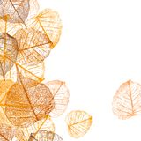 Background of vector autumn leaves Royalty Free Illustration