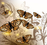 Background with vector butterflies for design Royalty Free Stock Image