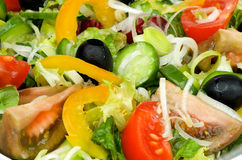 Background of Vegetable Salad Royalty Free Stock Images