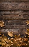 Frame of autumn leaves on wooden boards Stock Images