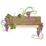 Background with vine ornament Stock Images