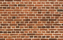 Background of vintage brick wall Royalty Free Stock Image