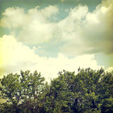 Background-7. Vintage nature background in summer style Royalty Free Stock Photography