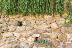 Background with vintage stones wall and plants. Part of wall as background Royalty Free Stock Photography
