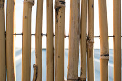 Background wall of bamboo sticks Stock Image