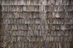 Background wall of rough weathered grey cedar shakes shingles. A whole wall of very weathered cedar shakes on the side of an old outbuilding Stock Image