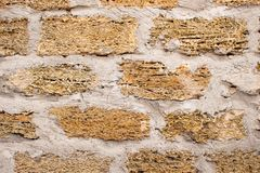 Background wall with shell rock. Old wall. Texture limestone royalty free stock images