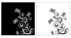 Background flower black white Royalty Free Stock Photography