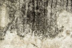 Background of Floor cement old. Background and Wallpaper or texture of Wall or Floor cement old with damage crack and stain Stock Photography