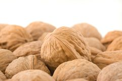 Background of walnuts. Stock Photography