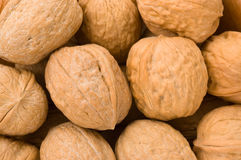 Background of walnuts. Royalty Free Stock Photography