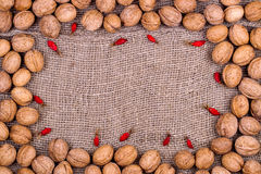 Background from walnuts and dogrose on burlap Royalty Free Stock Photo