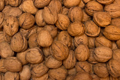 Background walnuts. A walnuts on a white background Stock Images