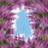Background of washing lilac Stock Image