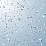 Background with water drops. Vector illustration Royalty Free Stock Image