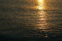 Background of the water surface at sunset Royalty Free Stock Photos