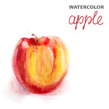 Background with watercolor apple Royalty Free Stock Image