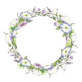 Background with watercolor drawing wild flowers, round floral frame, wreath with painted field plants, herbal border,botanical ill. Ustration in vintage style Stock Photography