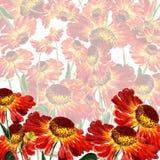 Flowers of rudbekia Stock Photos