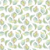 Background with watercolor leaves 2. Hand drawn seamless floral pattern 4 Stock Images