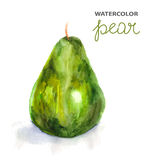 Background with watercolor pear Stock Image