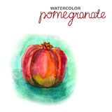 Background with watercolor pomegranate Royalty Free Stock Photo