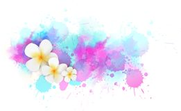 Background with watercolor splashes and tropical flowers. Abstract watercolor splashes line and tropical frangipani flowers. Travel concept background. Blue and Stock Image