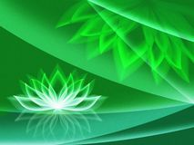 Background with waterlily Stock Images