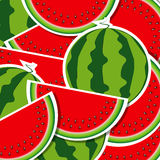 Background from watermelon. Stock Image