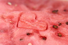 Background watermelon lovers Stock Photos