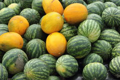 Background of watermelons and cantaloupes Royalty Free Stock Images