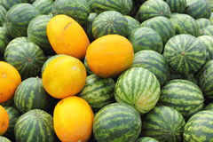Background of watermelons and cantaloupes Royalty Free Stock Photo