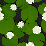 Background with watter lillies pattern Royalty Free Stock Images