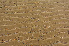 Background of wavy sand with broken shells Stock Image