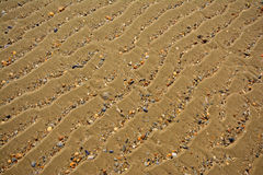 Background of wavy sand with broken shells, diagonal angle Royalty Free Stock Photo