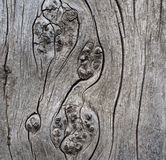 Background Of Weathered Cedar Stock Photography