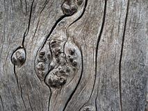 Background Of Weathered Cedar Stock Photos