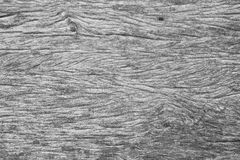 Background from weathered gray wooden boards texture. Royalty Free Stock Image