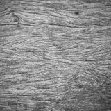 Background from weathered gray wooden boards texture. Stock Photo