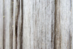 Background of weathered wood Royalty Free Stock Images