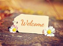 Background welcome Royalty Free Stock Image