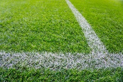 Background of wet green grass texture with white lines Royalty Free Stock Photos
