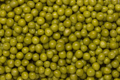 Background of wet green peas Royalty Free Stock Photo