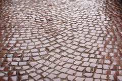 Background of wet road paving Royalty Free Stock Photography