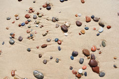 Background of wet sand and stones on beach Royalty Free Stock Photography