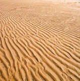 Background of wet sand texture Stock Images