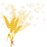 Background with wheat Stock Images