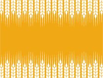 Background with wheat ears Royalty Free Stock Images