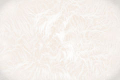 Background of white and beige swirly lines Royalty Free Stock Photography